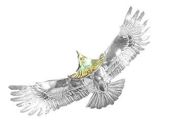ケンキクチ E-4頭金イーグル 画像
